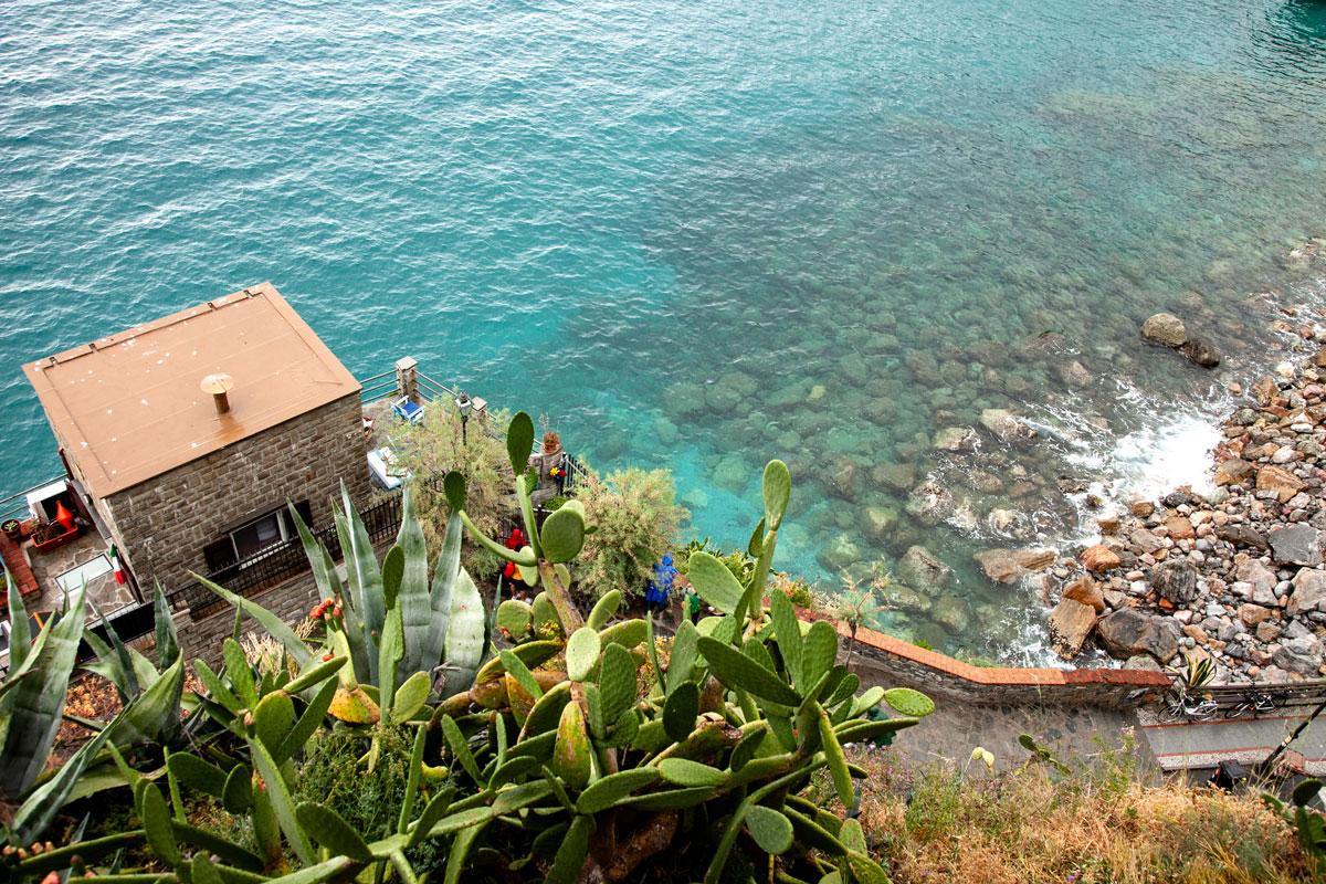 Piante Grasse e Agavi a Monterosso al Mare - Cinque Terre Liguria