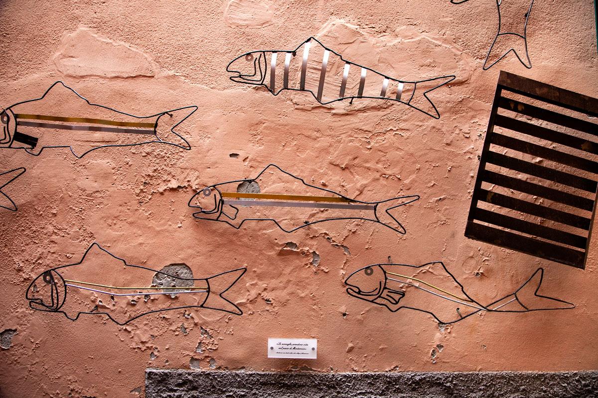 Sardine che decorano i muri