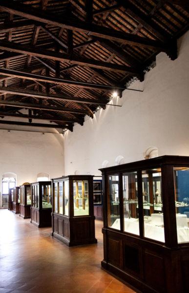 Museo MAEC Cortona - I difensori delle nostre liberta