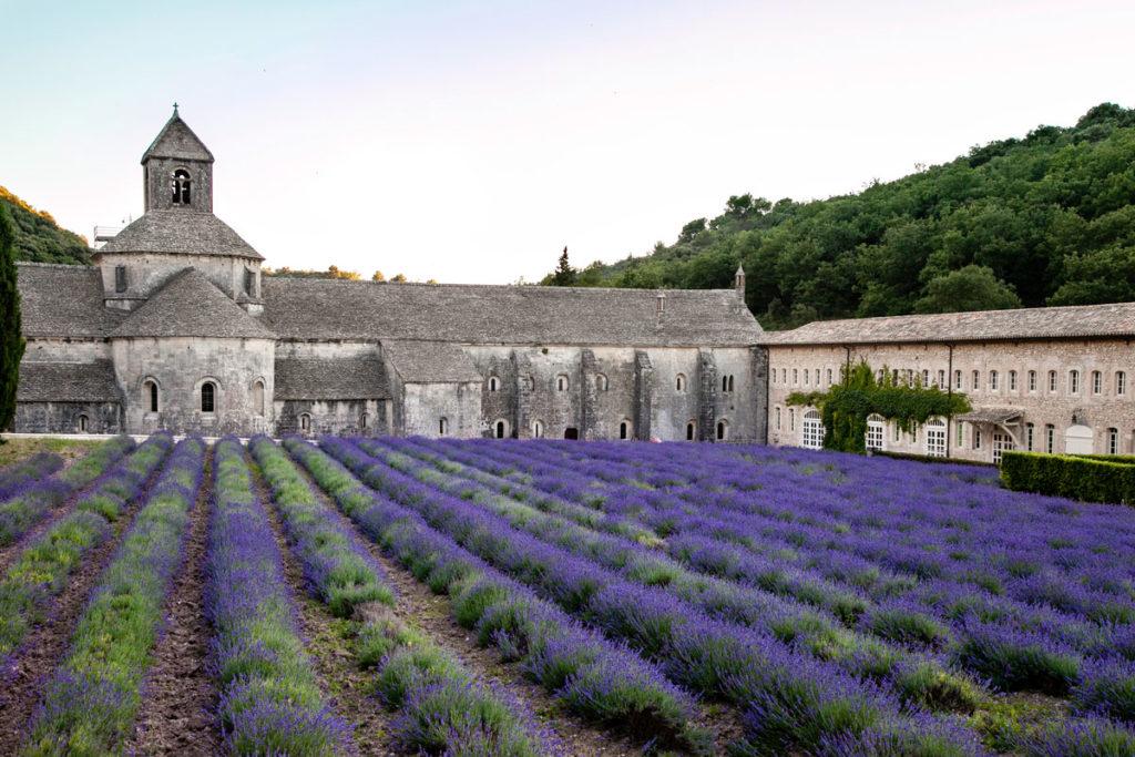 Abbazia di Sénanque - ordine cistercense - abbazia e shop