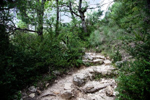 Area naturale sulla Strada D952