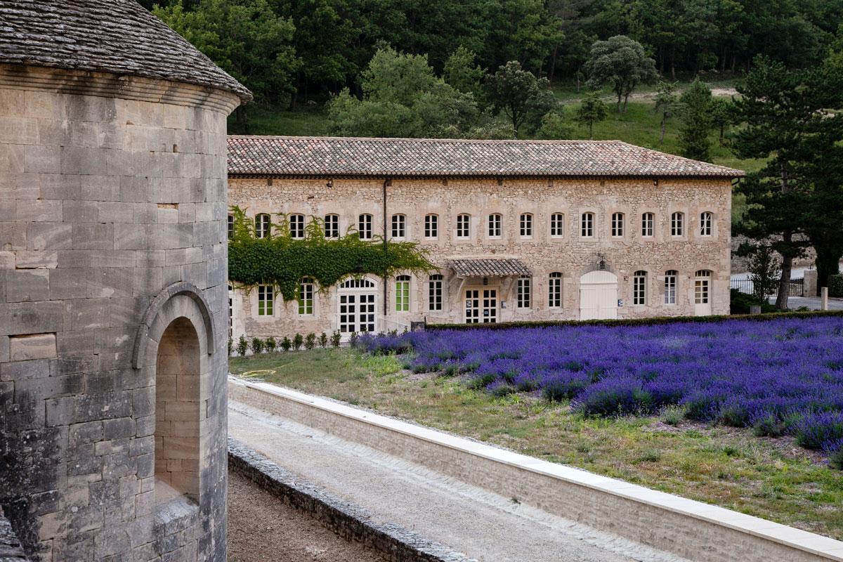 Lo Shop dell'abbazia di Sénanque con la lavanda fiorita davanti
