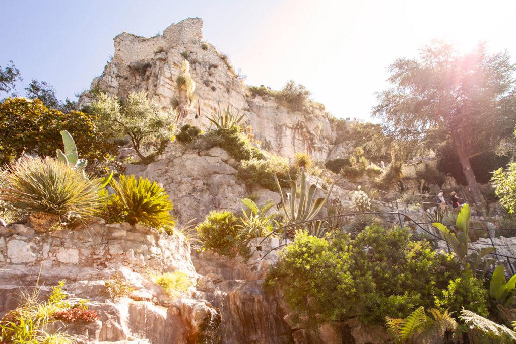 Scorcio del Giardino Esotico di Eze Village - Costa Azzurra