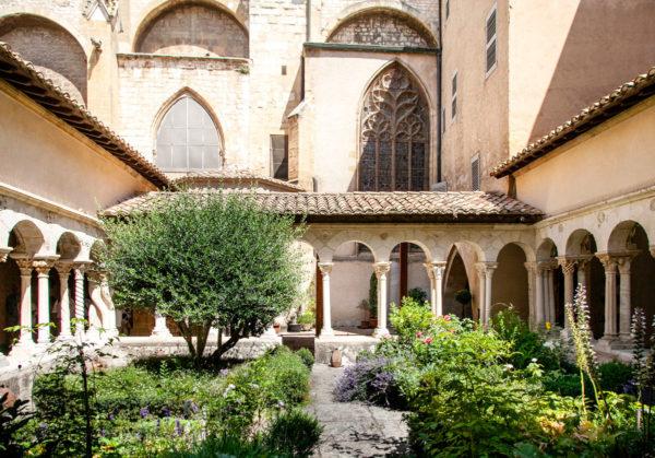 Il verde del chiostro e i muri della cattedrale