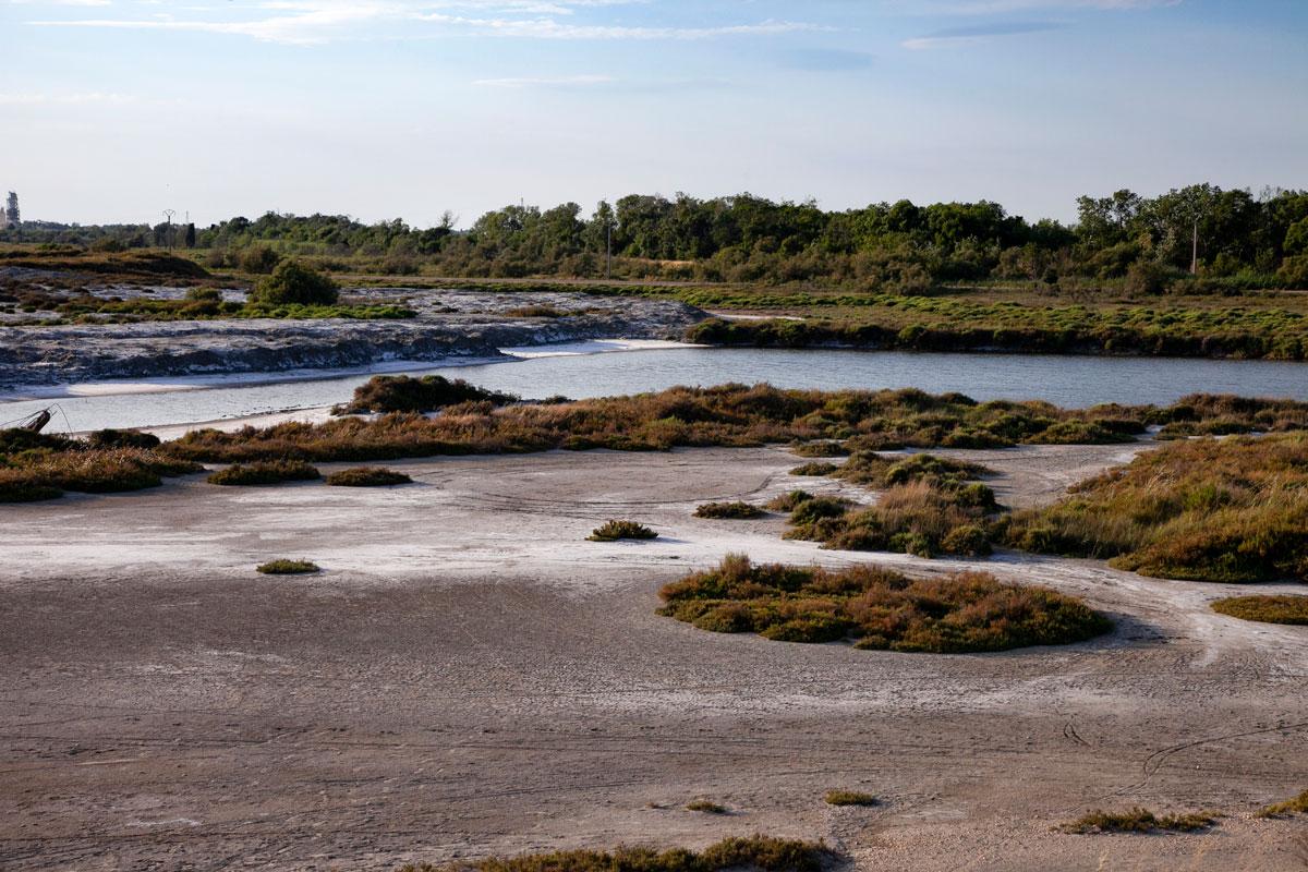 Salina della Camargue