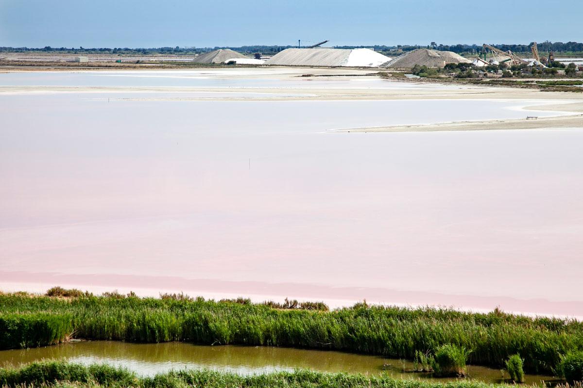 Salina rosa di Aigues Mortes - Camargue