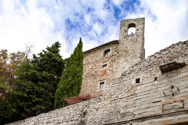Cipressi e alberi della fortezza del Girifalco - Cortona