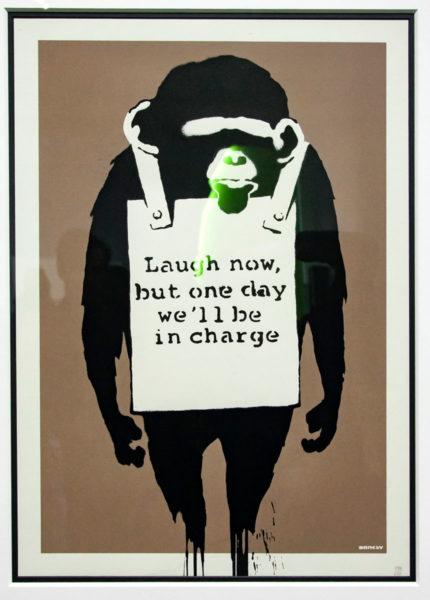 Serigrafia di Laugh Now - Messaggio politico affidato ad una scimmia