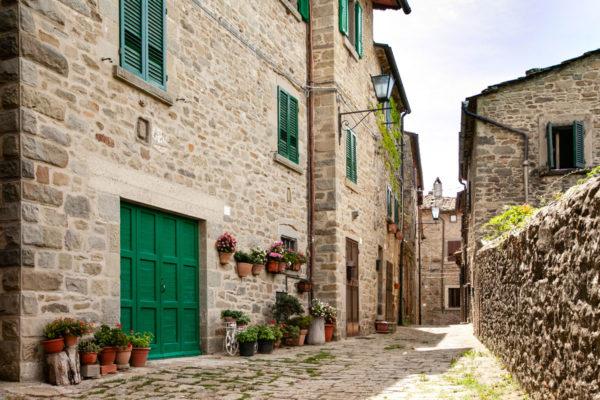 Vicoli del centro storico di Cortona - Portone e vasi di fiori