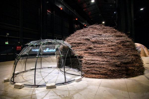 Chiaro Oscuro - Igloo di Mario Merz in vetro e rami di legno