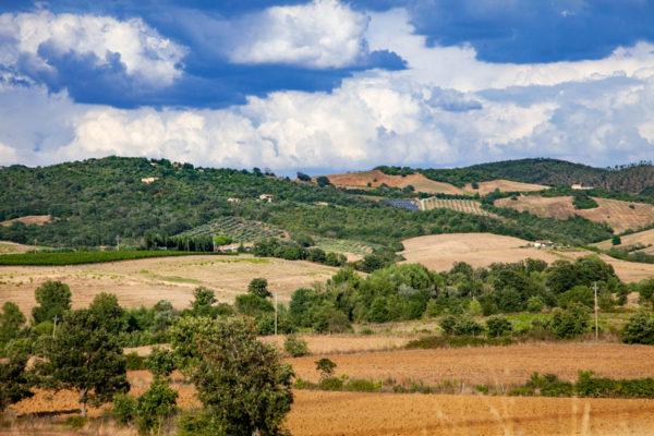 Campi e colline della Maremma Toscana