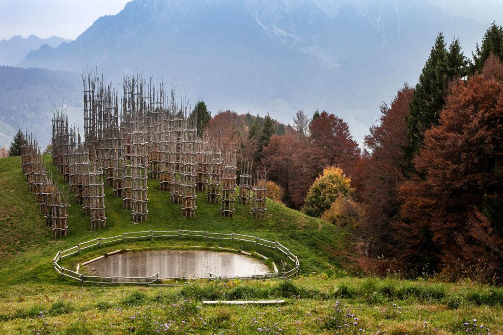 Cattedrale Vegetale - Oltre il Colle -Bergamo
