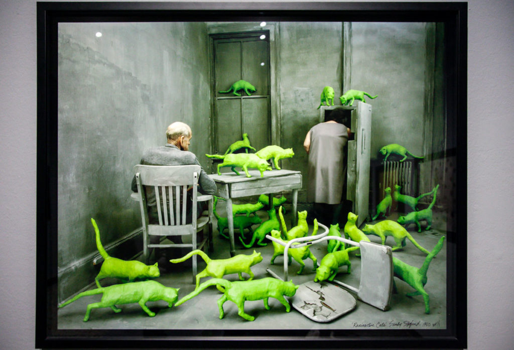Sandy Skoglund - Radioactive Cats 1980 - Gatti Verdi nella Staged Photography in Mostra a Torino