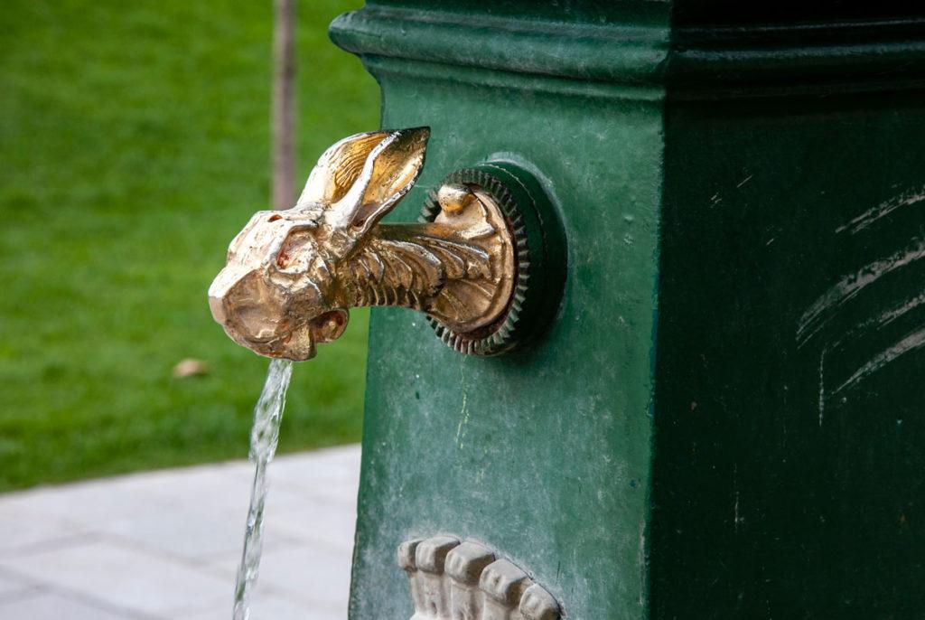 Vedovelle e Draghi Verdi di Serena Vestrucci - nuovi bocchelli delle fontane di CityLife - Coniglio