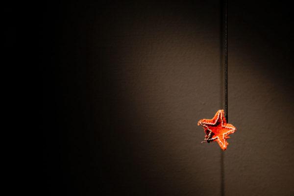 Stella rossa ritrovata dentro alla Risiera di San Sabba