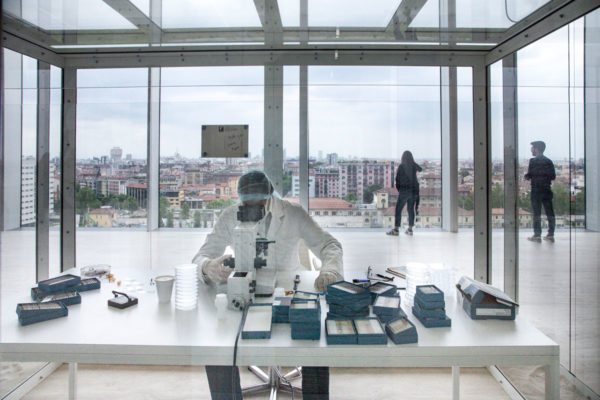 A Way of Seeing - lo Scienziato di Damien Hirst