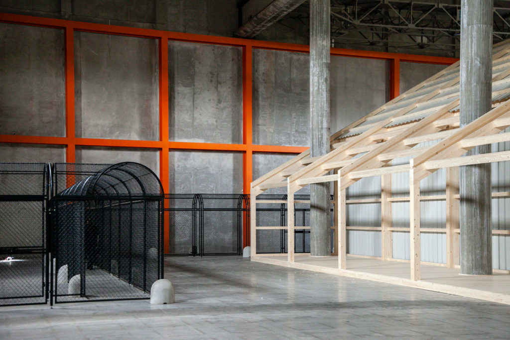 Collegamento tra Neighbor Dub e la struttura in legno nel Deposito di Fondazione Prada - Whether Line