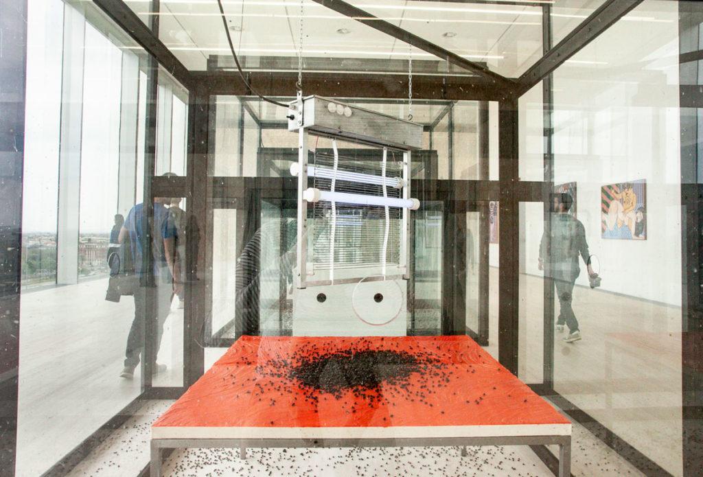 Dettaglio delle mosche morte di Damien Hirst - Waiting for Inspiration