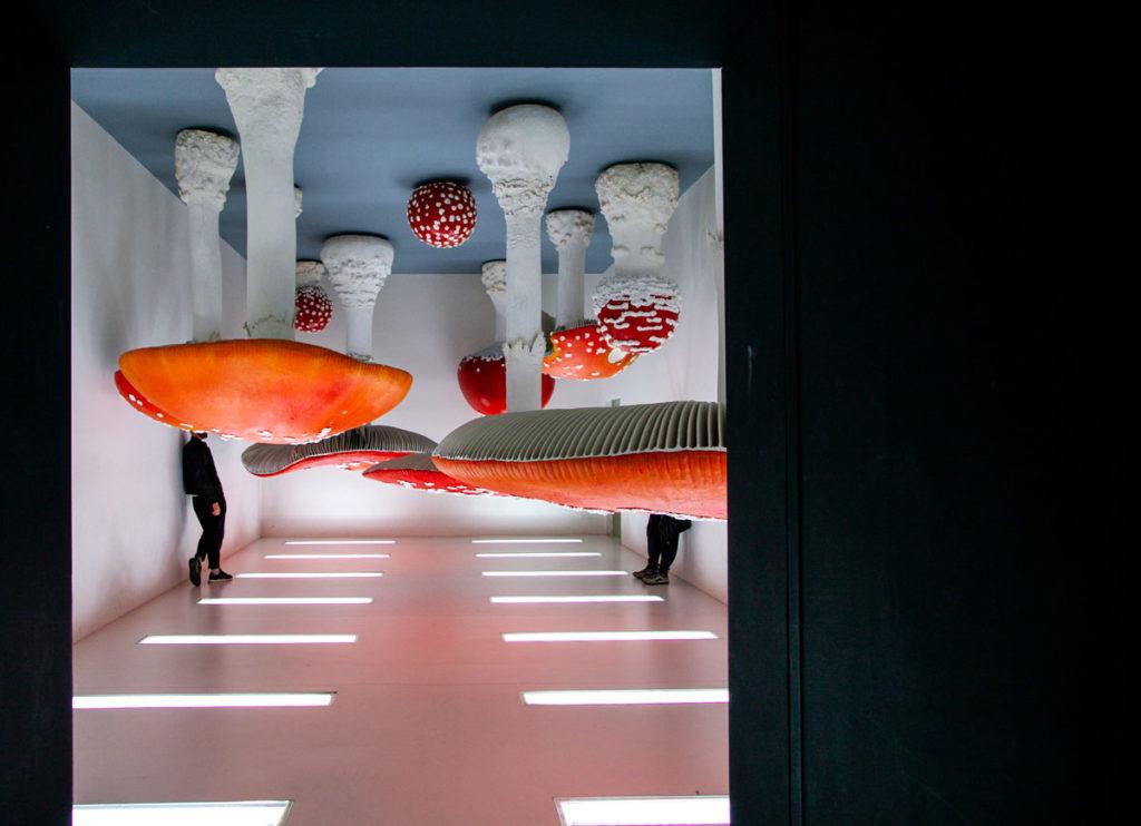Upside Down Mushroom Room di Carsten Holler - Mostra Permanente Atlas