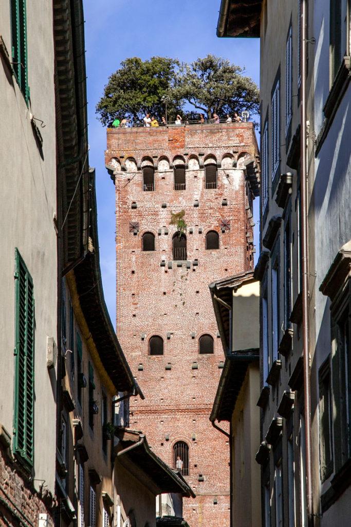 Torre Guinigi - Torre con Alberi nel Centro di Lucca