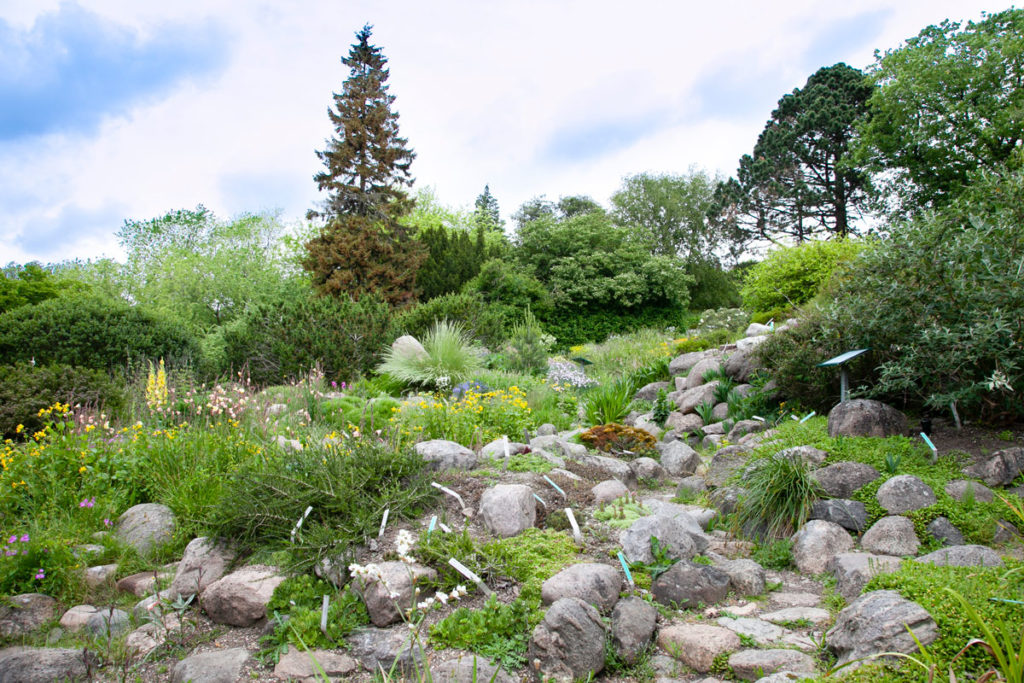 Giardino botanico di Aarhus