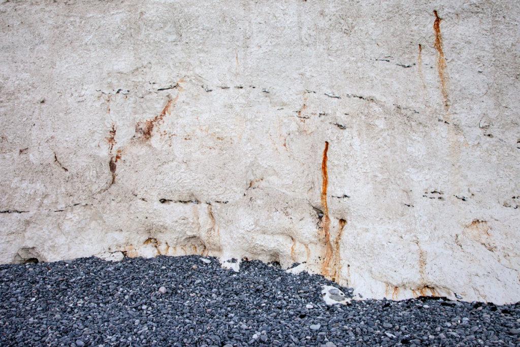 Il gesso delle scogliere di Mon - con scheletrini e fossili