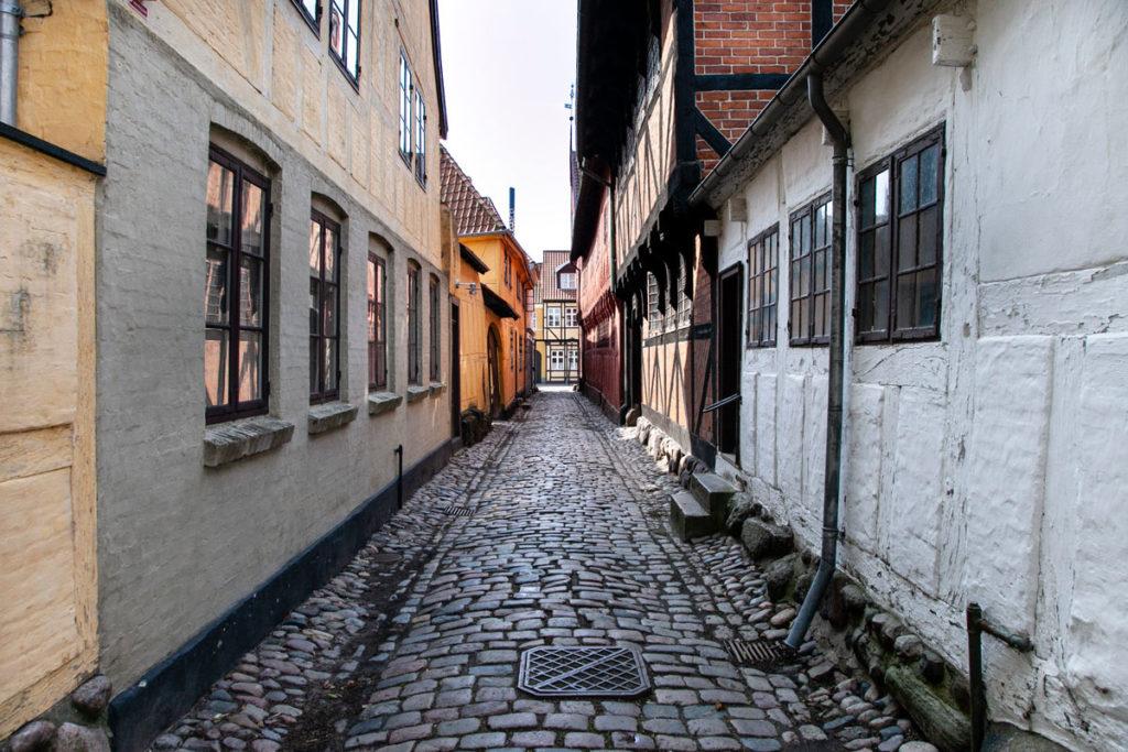 Montergarden - Visita al quartiere di Odense fermo alla vita di Andersen