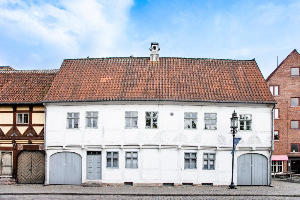 Palazzo Storico di Odense nei pressi di MonterGarden