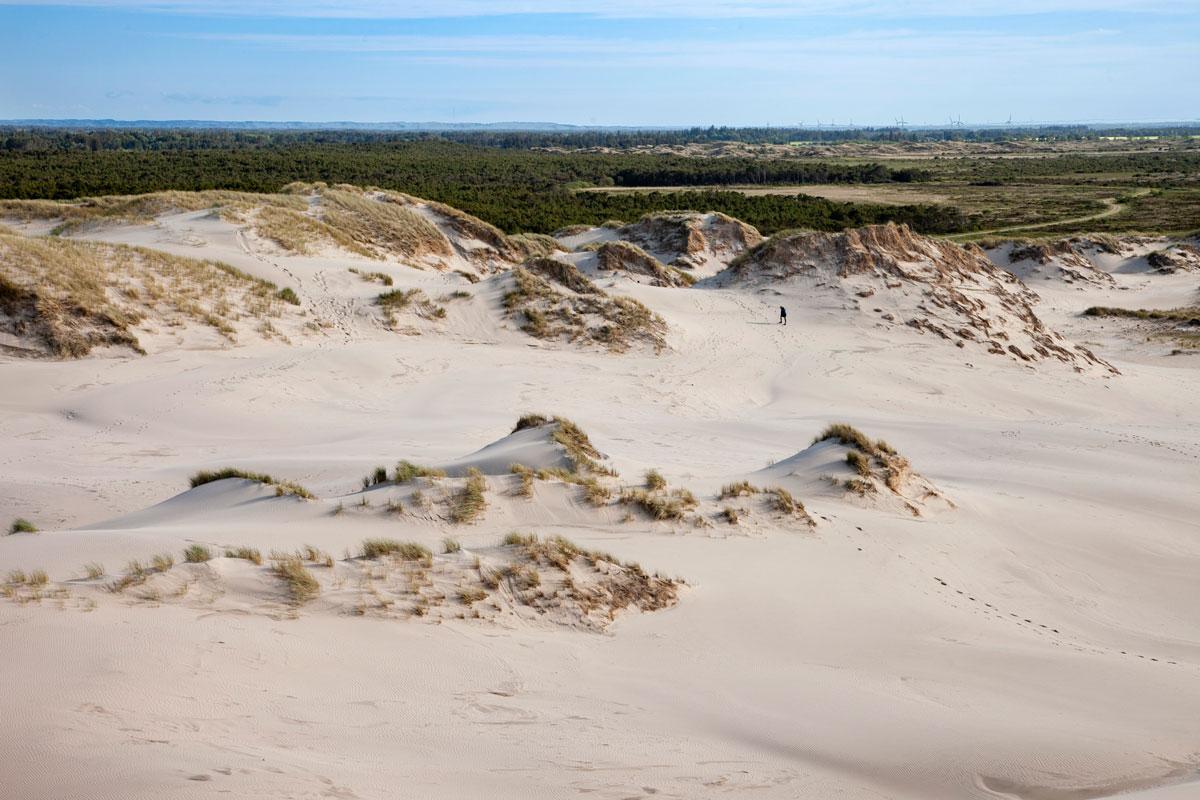 Rabjerg Mile - Le dune di sabbia mobili nei pressi di Skagen