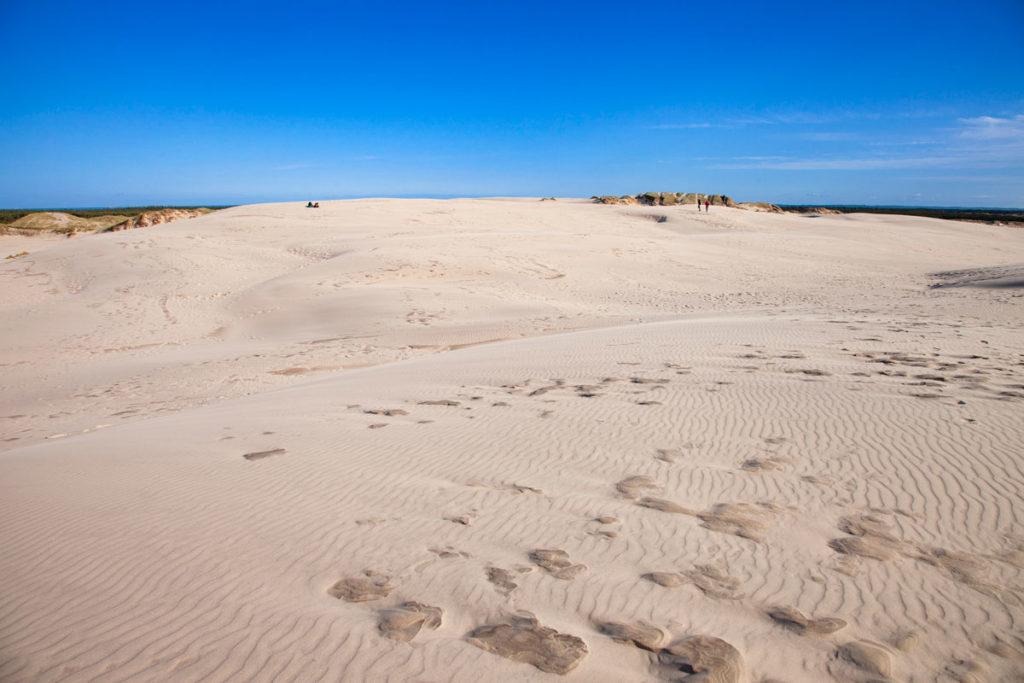 Rabjerg Mile - Passeggiata sulle dune mobili della Danimarca