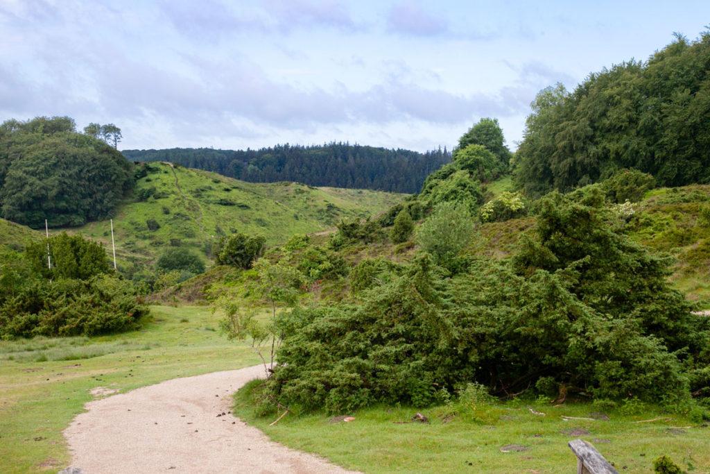 Rebild National Park - Natura in Danimarca - Jutland
