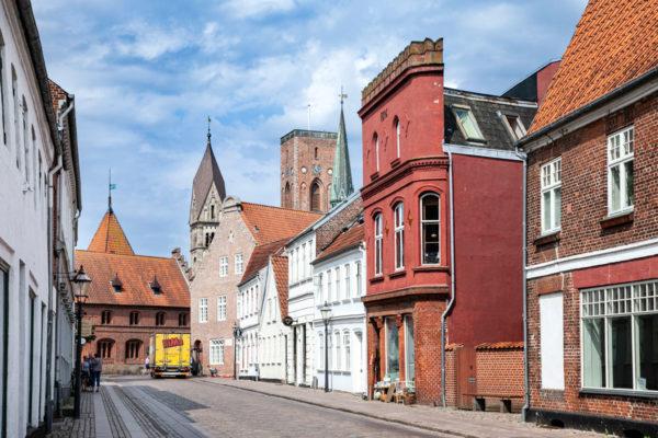 Ribe - Citta più antica di Danimarca