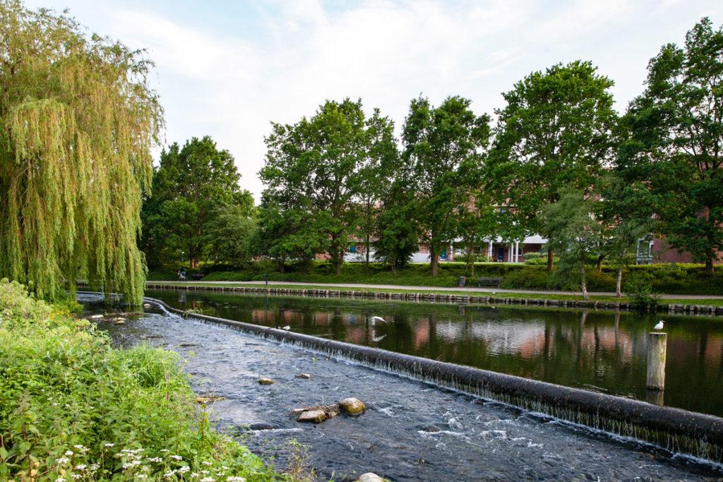 Riva del Parco Monks Mose - Odense