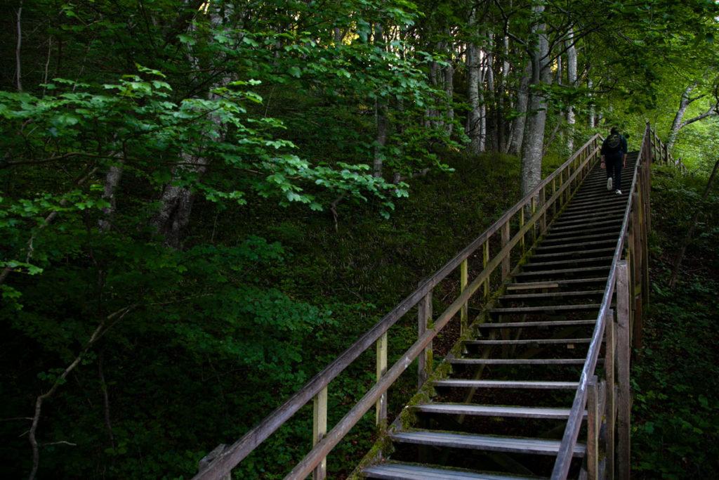 Scalinata per 120 metri di dislivello delle scogliere Mons Klint