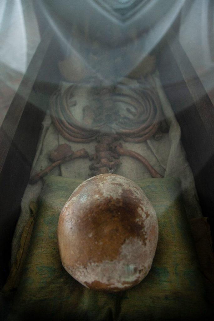 Scheletro di Benedikt - Contenuto nella Cripta della Cattedrale di Odense