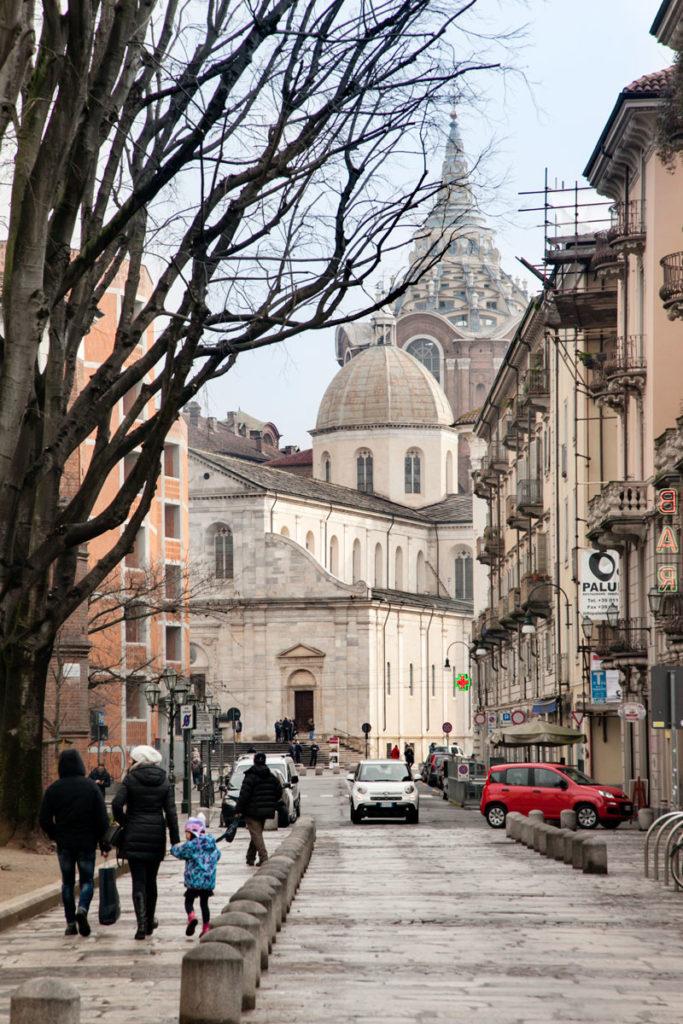 Scorcio duomo di Torino tra gli alberi