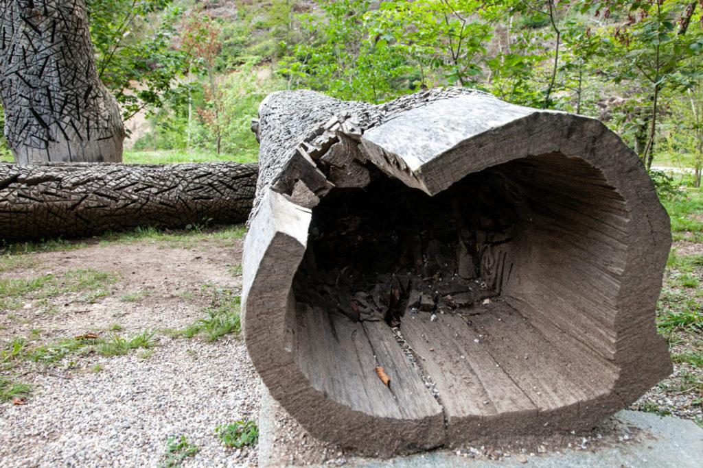 I tronchi cavi in mostra ad Arte Sella