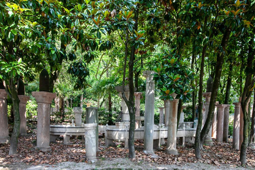 Il giardino della mangrovie conosciuto come Arengo - Vittoriale degli Italiani