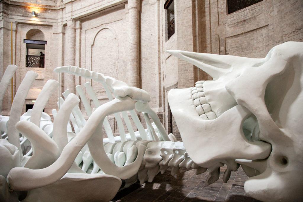 Il naso a Becco di Calamita Cosmica - Gino de Dominicis