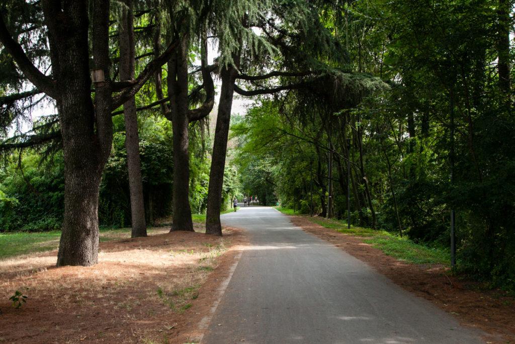 Jogging in mezzo alla natura a Milano - Dove Andare