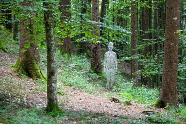 La donna invisibile di Cedric Le Borgne - Donna di filo di ferro nel bosco