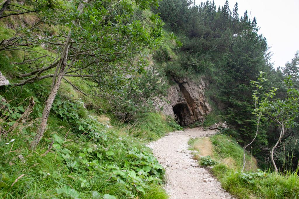 Natura e Roccia nel trekking sul monte Pasubio
