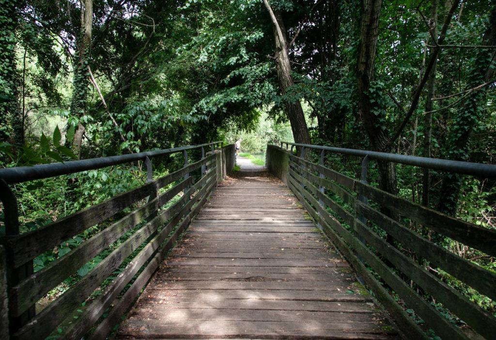 Passerelle e Ponti in legno - Parco delle Cave