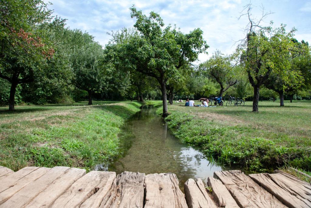Passerelle in legno e canali nel terzo parco di Milano