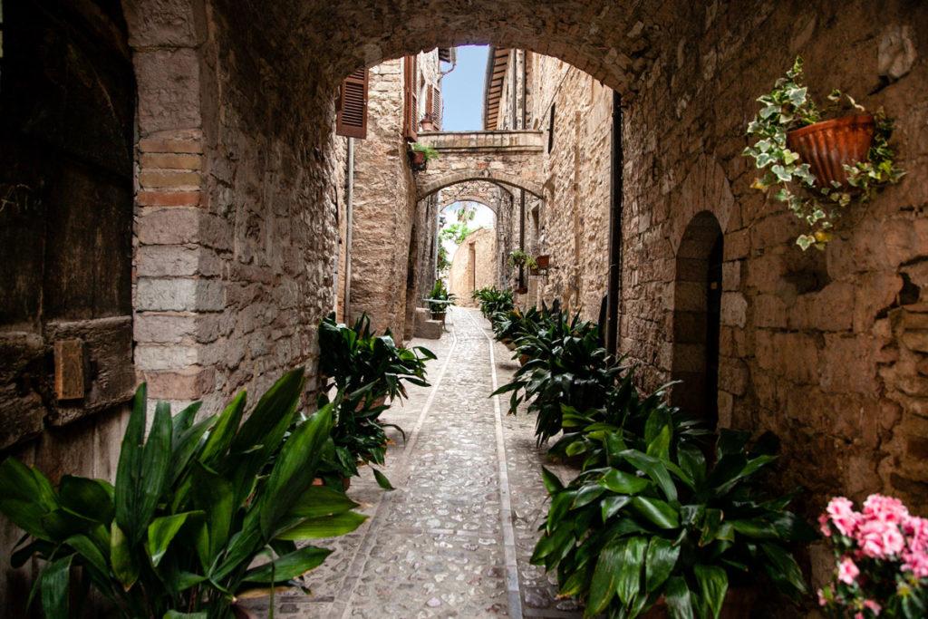 Piante verdi nei vicoli di Spello - Borgo Umbria