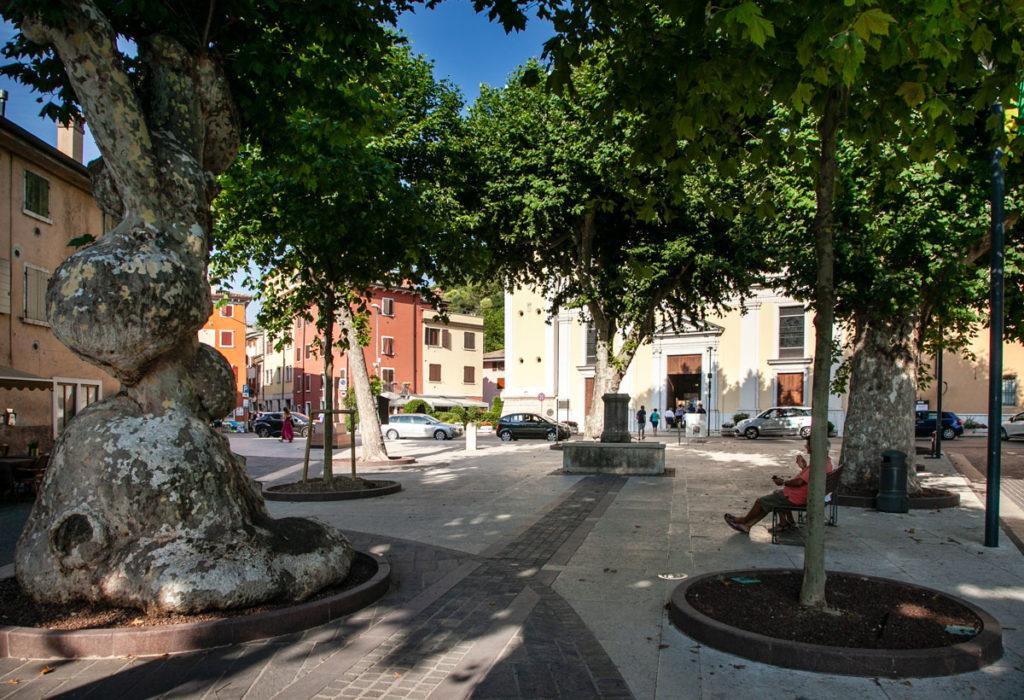 Piazza della chiesa con platani