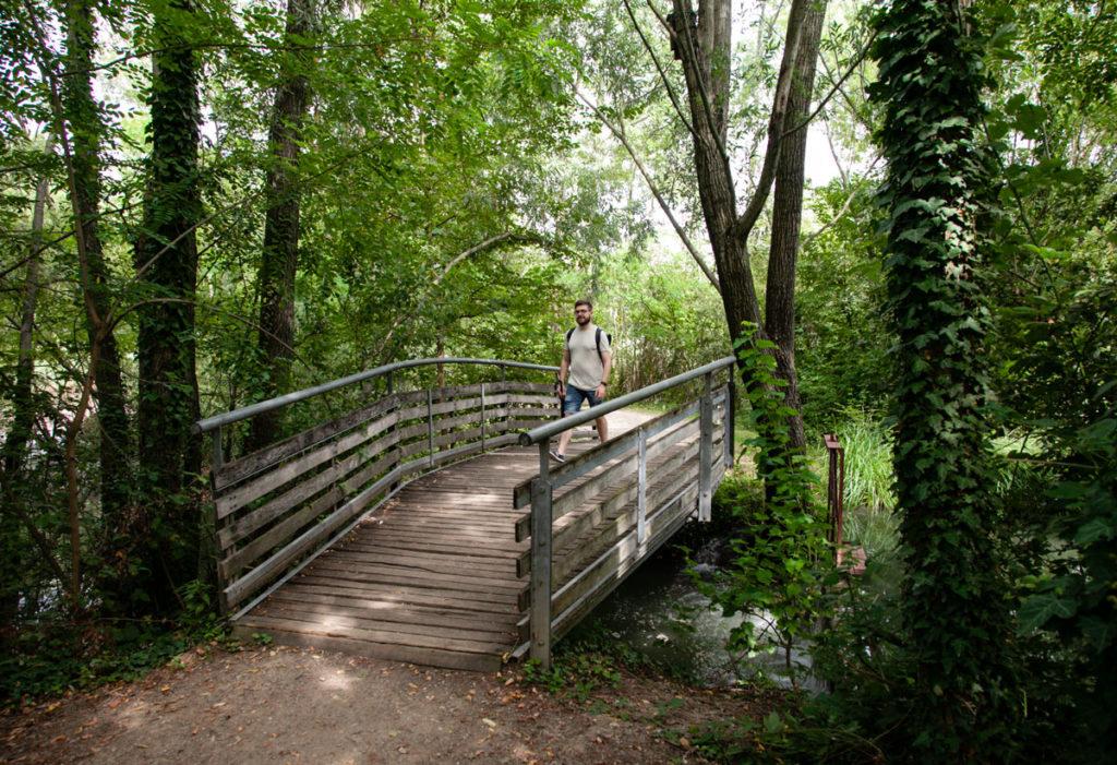 Ponte in legno nella zona umida del Parco delle Cave - Milano