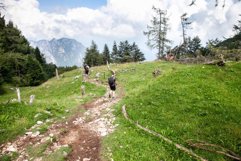 Scorciatoia tra i Tornanti della Strada degli Scarubbi - Monte Pasubio