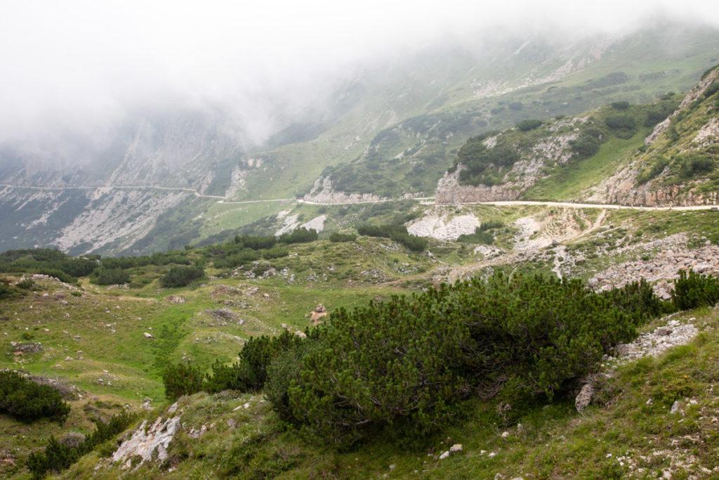 Sentiero lungo il crinale della Montagna - Strada degli Scarubbi