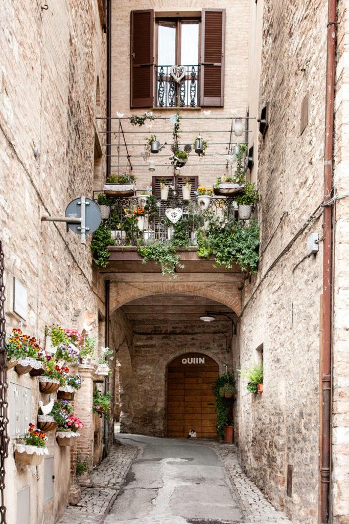 Terrazzi fioriti nel borgo medievale - Umbria